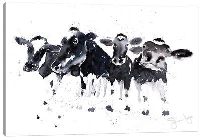 Row Of Cows B_W Canvas Art Print