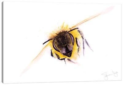 Bee Incoming Bee Canvas Art Print