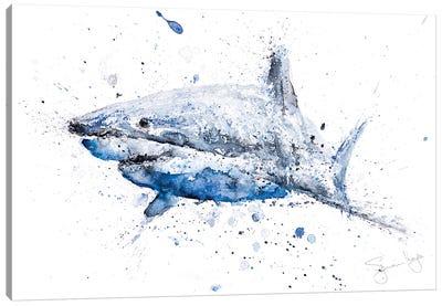 Shark I Canvas Art Print