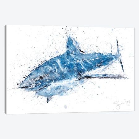 Shark II Canvas Print #SYK141} by Syman Kaye Art Print