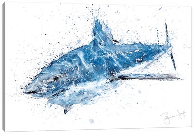 Shark II Canvas Art Print