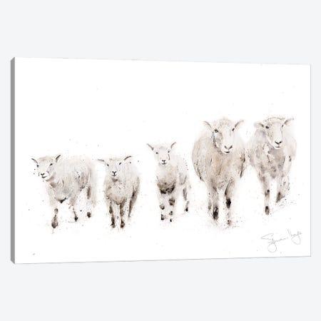 Sheep Family Canvas Print #SYK142} by Syman Kaye Art Print
