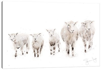 Sheep Family Canvas Art Print