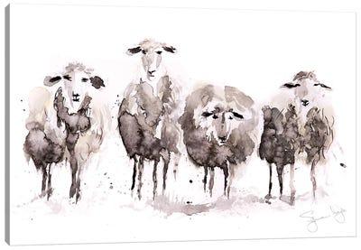 Sheep More Sheep In A Row Canvas Art Print