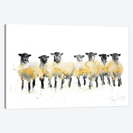 Sheep Row Of Sheep Canvas Print #SYK144} by Syman Kaye Canvas Artwork