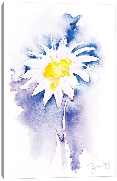 Simple Daisy II Canvas Art Print