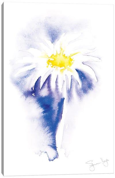 Simple Daisy III Canvas Art Print