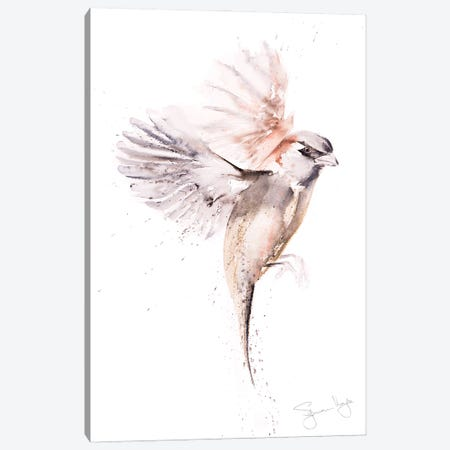Sparrow Just A Canvas Print #SYK152} by Syman Kaye Canvas Art