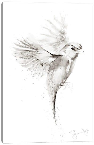 Sparrow Just A II Canvas Art Print