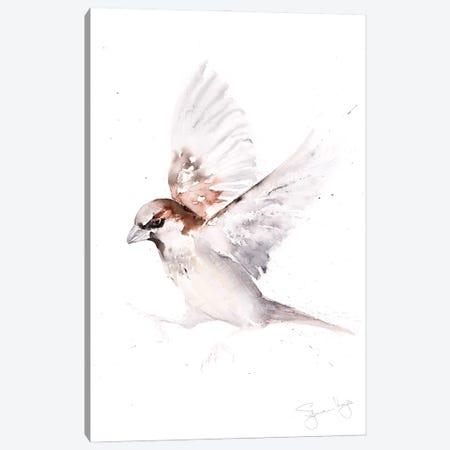 Sparrow Only A Canvas Print #SYK154} by Syman Kaye Canvas Art Print
