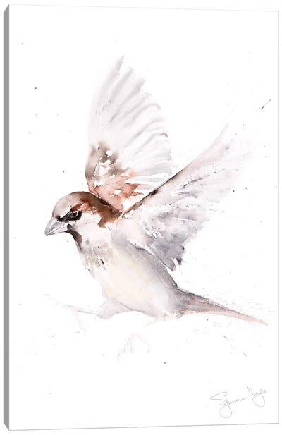 Sparrow Only A Canvas Art Print