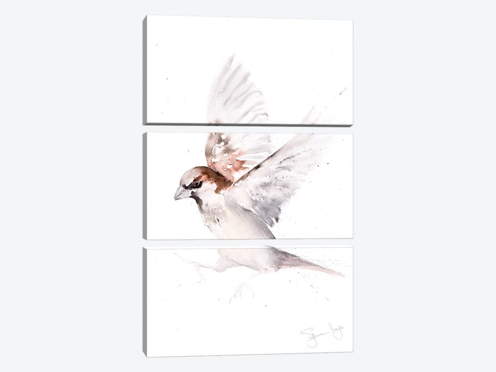 Sparrow Only A by Syman Kaye 3-piece Canvas Artwork