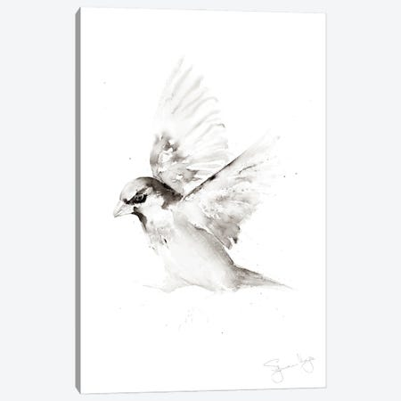 Sparrow Only A II Canvas Print #SYK155} by Syman Kaye Canvas Print