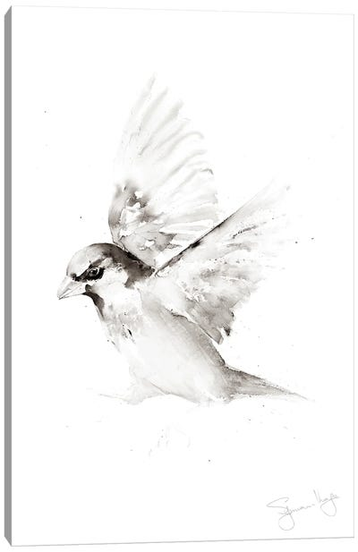 Sparrow Only A II Canvas Art Print