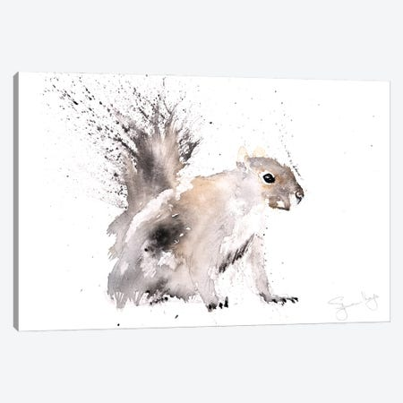 Squirrel Grey Squirrel Canvas Print #SYK157} by Syman Kaye Art Print