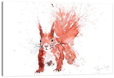 Squirrel Hazel Canvas Art Print