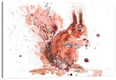 Squirrel Rusty Nuts Canvas Art Print