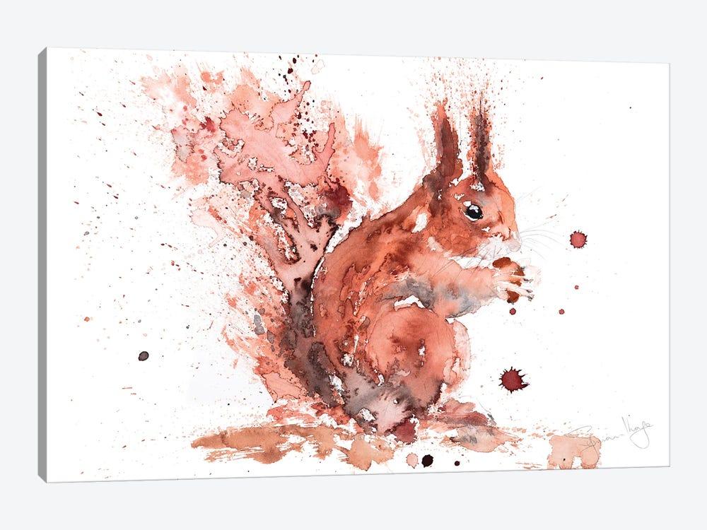 Squirrel Rusty Nuts by Syman Kaye 1-piece Canvas Art Print