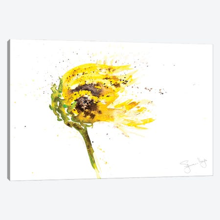 Sunflower Blowing Canvas Print #SYK161} by Syman Kaye Canvas Print