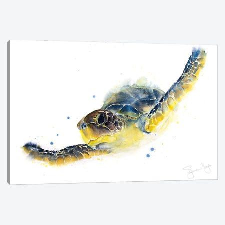 Turtle Chelys Galactica Canvas Print #SYK169} by Syman Kaye Art Print