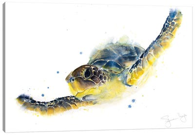 Turtle Chelys Galactica Canvas Art Print