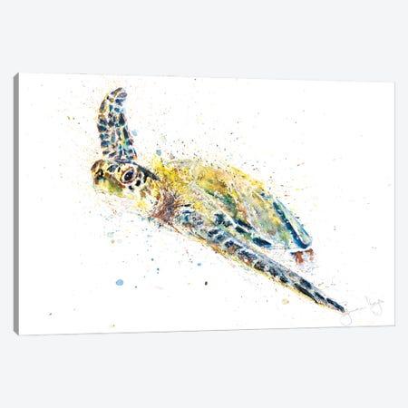 Turtle II Canvas Print #SYK170} by Syman Kaye Canvas Artwork
