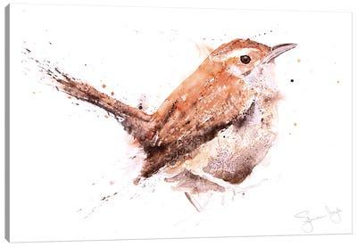 Wren Canvas Art Print