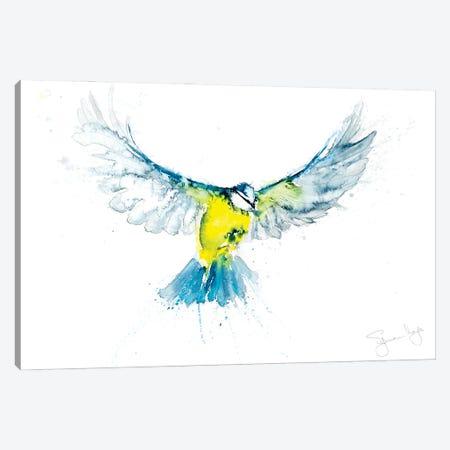 Blue Tit In Flight VI Canvas Print #SYK17} by Syman Kaye Canvas Art Print