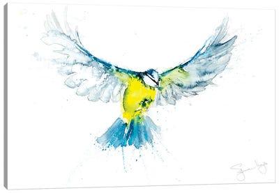 Blue Tit In Flight VI Canvas Art Print