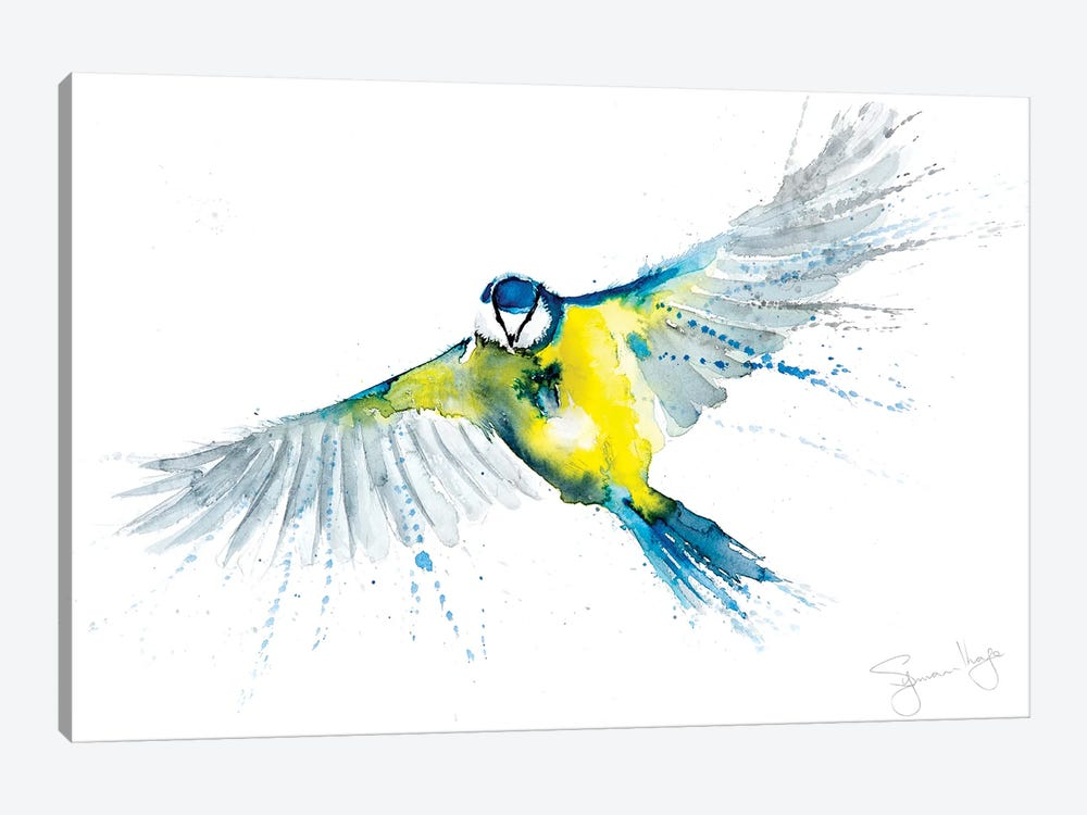 Blue Tit In Flight X by Syman Kaye 1-piece Canvas Art Print