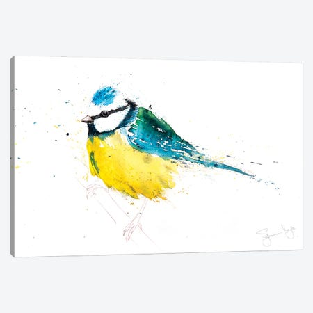 Blue Tit IX Canvas Print #SYK19} by Syman Kaye Canvas Wall Art