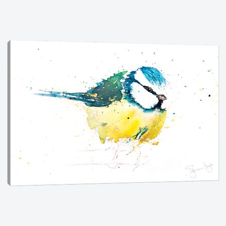 Blue Tit X Canvas Print #SYK20} by Syman Kaye Art Print