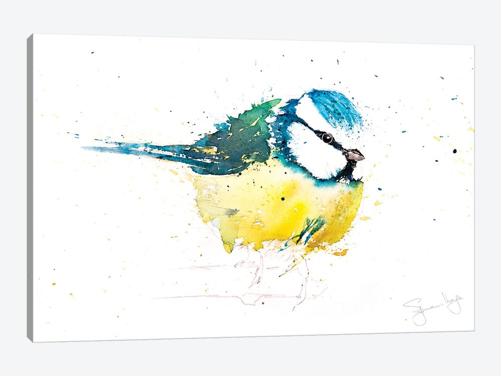 Blue Tit X by Syman Kaye 1-piece Canvas Wall Art