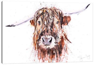Boris Highland Cow Canvas Art Print