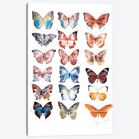 Butterfyly Collection I Canvas Print #SYK27} by Syman Kaye Canvas Art