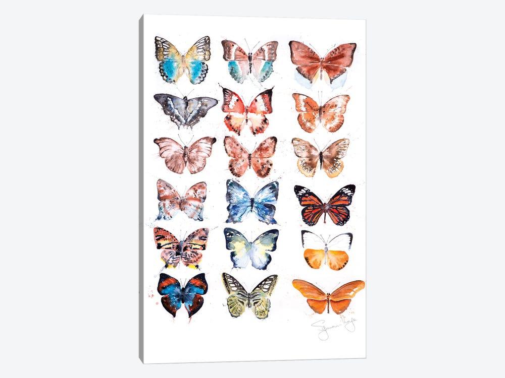 Butterfyly Collection I by Syman Kaye 1-piece Canvas Art Print