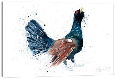 Capercaillie Cock A Hoot Too Canvas Art Print
