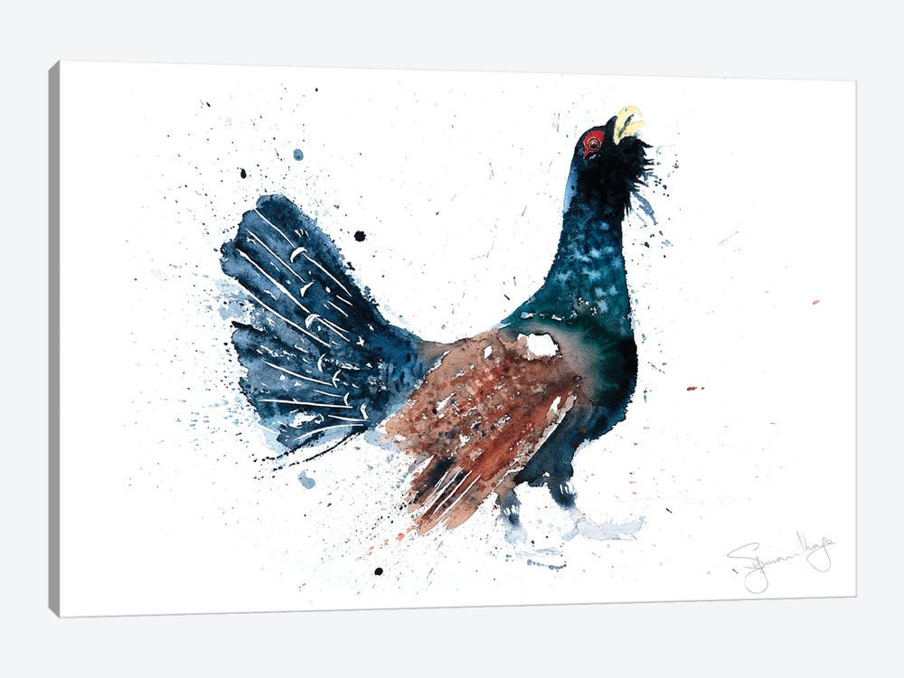 Capercaillie Cock A Hoot Too by Syman Kaye 1-piece Canvas Print