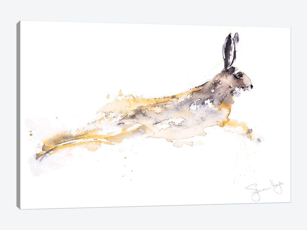 Chancer Hare by Syman Kaye 1-piece Canvas Art Print