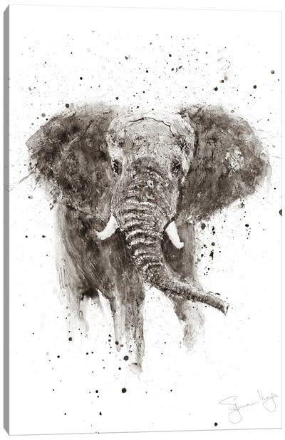 Elephant II Sepia II Canvas Art Print
