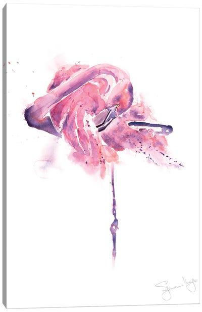 Flamingo Preening Flamingo I Canvas Art Print