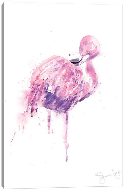 Flamingo Preening Flamingo II Canvas Art Print