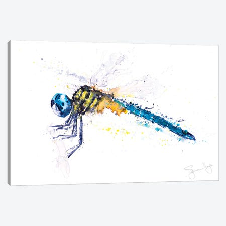 Flit Dragonfly Canvas Print #SYK46} by Syman Kaye Canvas Artwork