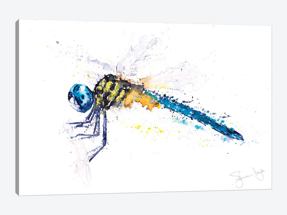 Flit Dragonfly by Syman Kaye 1-piece Canvas Art
