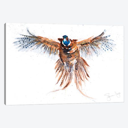 Flushed Pheasant II Canvas Print #SYK48} by Syman Kaye Art Print