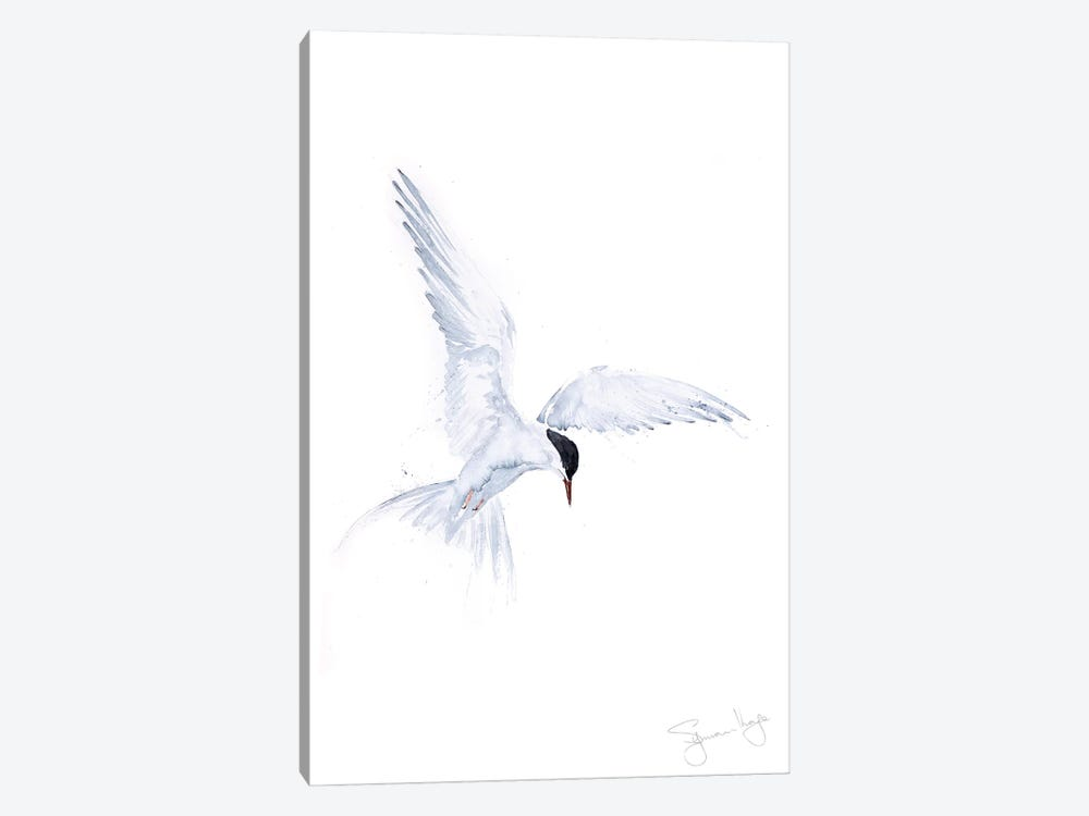 Flying Solo Arctic Tern 1-piece Art Print