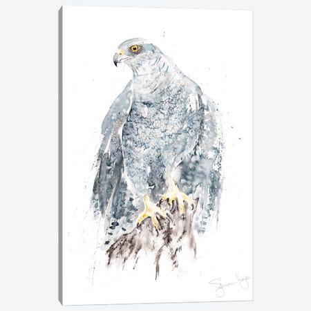 Goshawk I Canvas Print #SYK57} by Syman Kaye Canvas Art Print