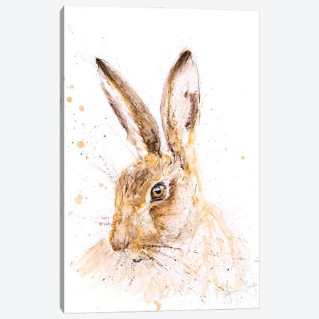 Hare Beautiful Hare Canvas Print #SYK60} by Syman Kaye Canvas Art Print