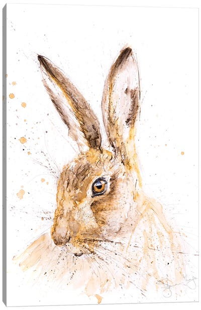 Hare Beautiful Hare Canvas Art Print