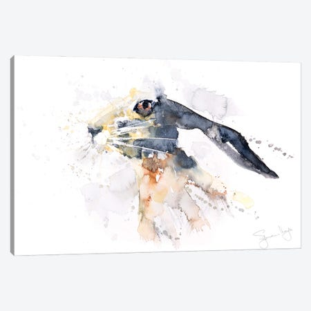 Hare II Canvas Print #SYK62} by Syman Kaye Art Print
